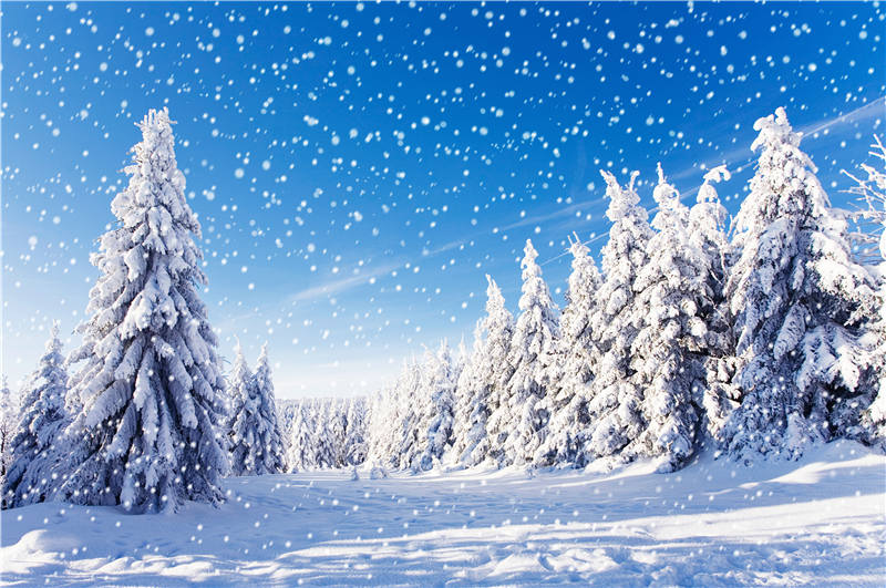 KIDNIU 9x6ft Snowflake Background Photography Winter Snow Photo Props Wallpaper Vinyl Screen Backdrops win1323 kidniu vinyl background photography for photo studio winter snow props trees wallpaper backdrops 9x5ft win1332