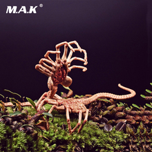1/6 Scale Alien Predator Chestburster Facehugger Model for 12 inches Action Figure Accessory Collections Toys 7 inch neca predator 2 action figure ultimate series elder predator predator movie toys action figures pvc model dolls gift