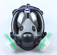 Chemical Dust Mask 7Sets 6001 Gas Mask Acid Dust Respirator Paint Pesticide Spray Silicone Filter Laboratory Cartridge Welding