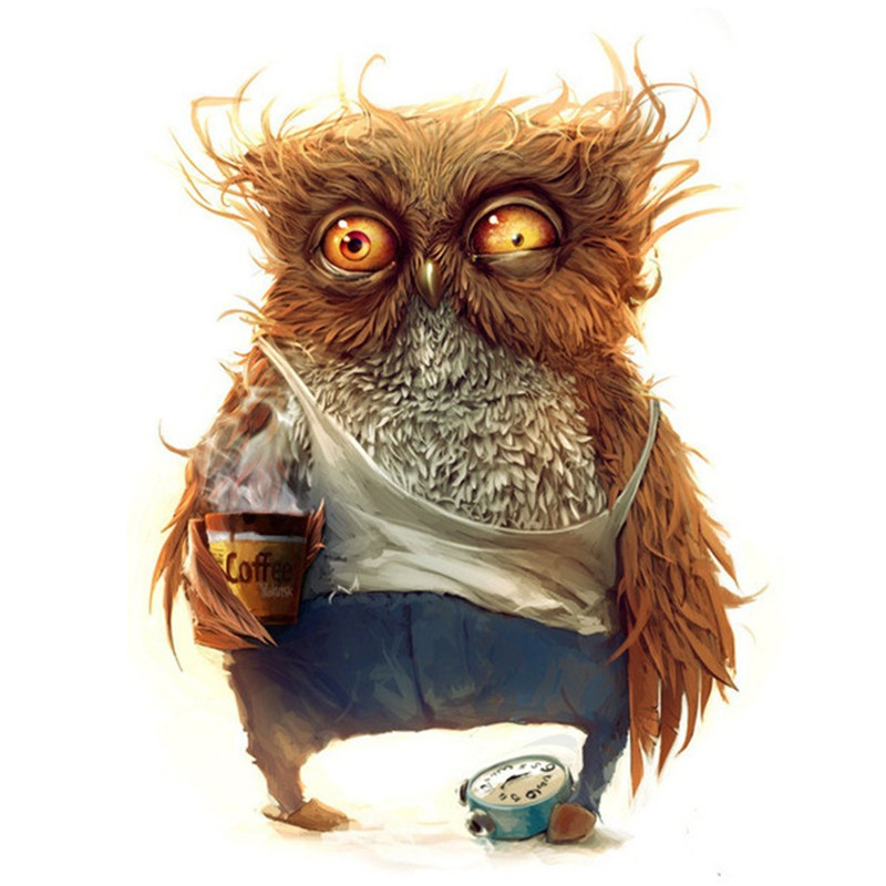 New 5d Diy Diamond Painting Coffee Owl Canvas Sticker Round Stone Embroidery Cross Sch Living Decoration Picture In