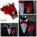 Новый Бесплатная Доставка моды мужской woan МУЖСКАЯ Корейской высокого класса свадьбы вечер гости принимающей этап перо брошь на продажу