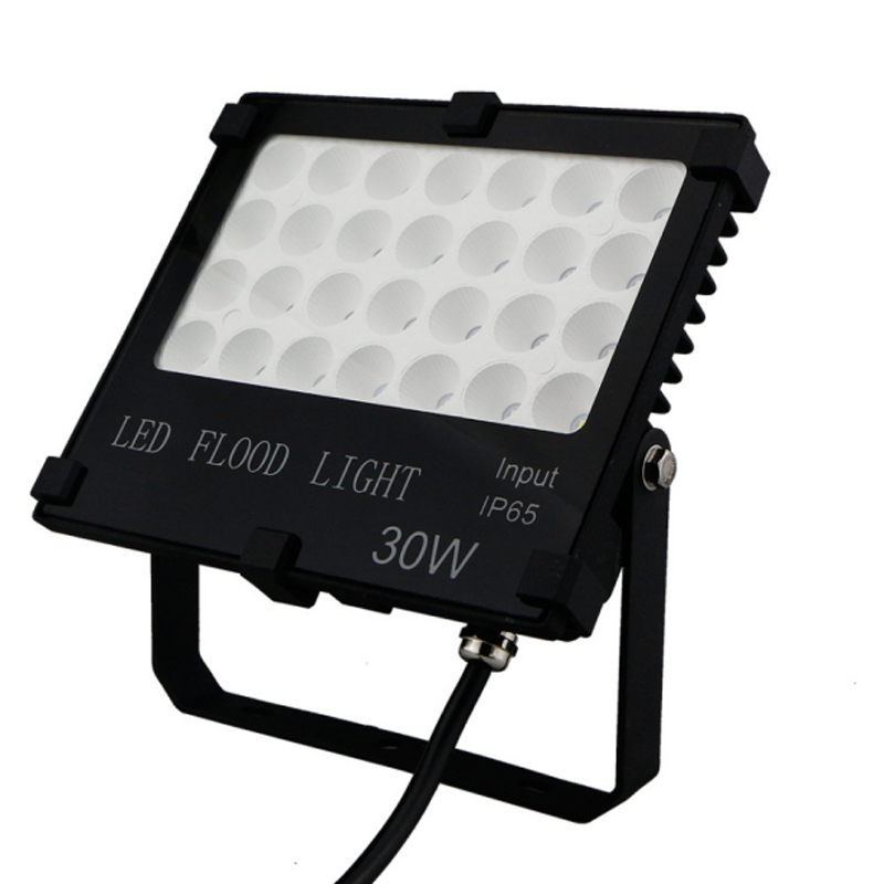 Red Yellow Blue Green for Tree Building Decoration 20W 30 50W 100W Outdoor LED Floodlight Light Multe SMD 3030 LED Source