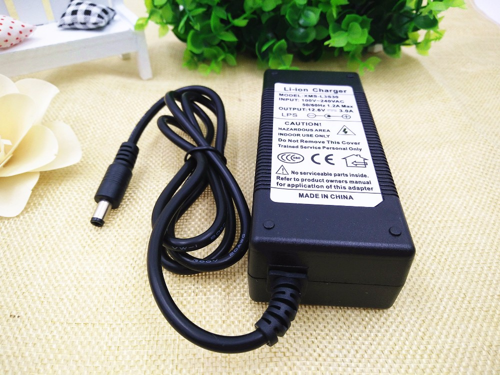 12V 3A Battery Charger (1)