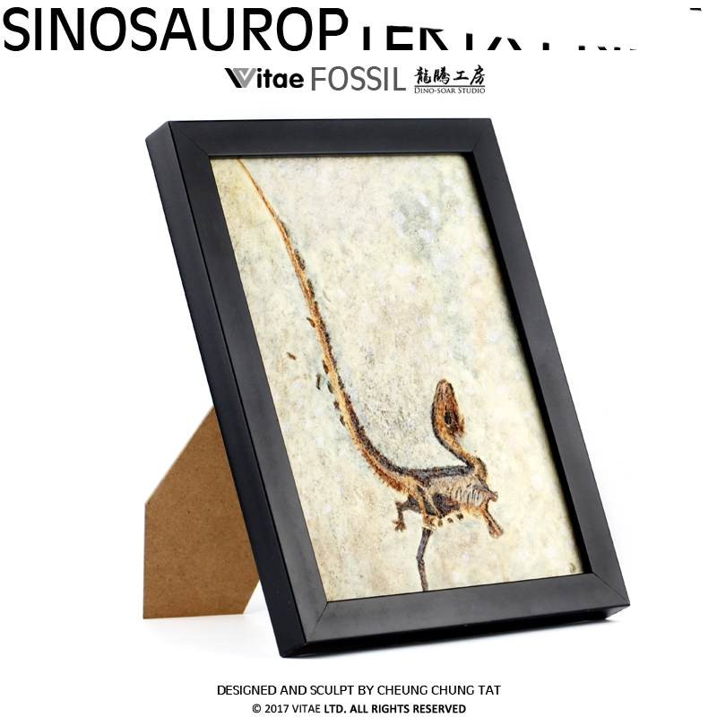 Vitae fossils Jurassic dinosaur original Chinese Dragon Bird carved stone table pendant photo frame home dec