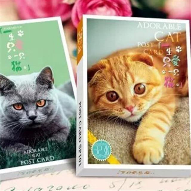 64pcslotpet Nature Cat Star People Postcards Set Christmas Happy