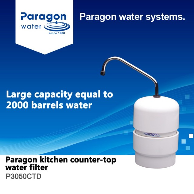 Paragon Kitchen Water Filter P3050CTD