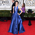 Royal Blue Celebrity Dresses Simple Red Carpet Dresses 2016 Vestido De Festa Custom Made Cheap Women Formal Evening Gowns