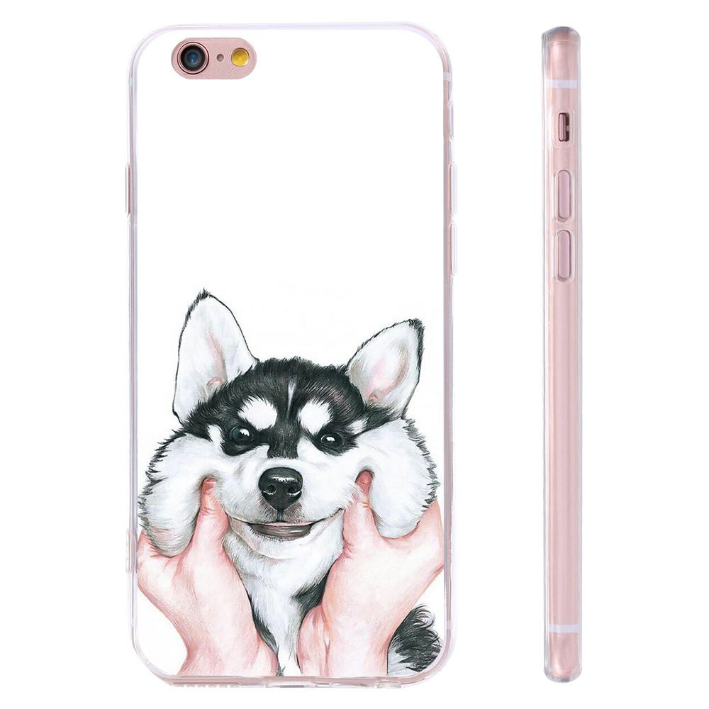 dog case  (2)