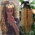 Перуанский Ombre Странный Вьющиеся Волосы Переплетения 4 Пучки Человеческих Волос Weave Связки Темные Корни Светлые Волосы Короткие Вьющиеся Переплетения Человеческих Волос