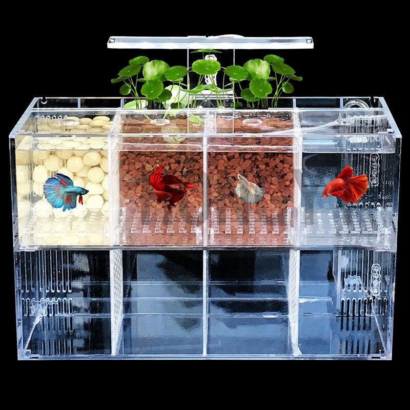 HONGYI 1 Piece Acrylic Bettas Cylinder Isolated Fish Tank Tilted Water Pump Breeding Cylinder Baby Betta Tank Guppy Breeding