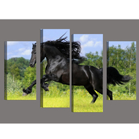 4pcs/set Diy Diamond Painting full square drill home decor Painting Cross Stitch Embroidery Black Horse Mosaic picture BK 3010