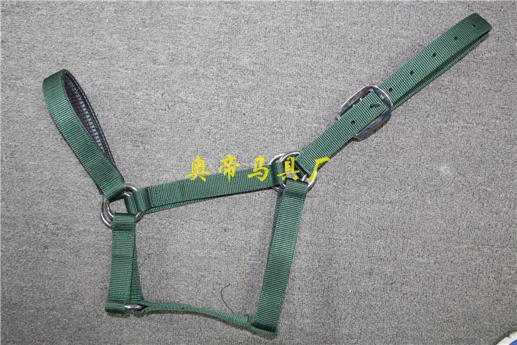 Aoud Saddlery Textile Halter Riding Horse Racing Equipment Equestrian Taps Halter Stainless Steel Buckle Headstall High Quality