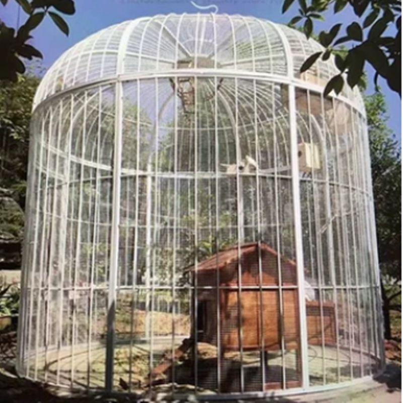Cage à oiseaux en fer forgé paon perroquet starling muguet cage à oiseaux décorée en plein air grande cage à oiseaux (Plus le filet n'ajoute pas de fond)