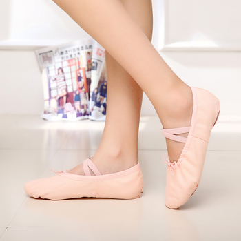 Pink Blue Rose Red Black White Green Flesh Ballet Shoes for Girl Woman Yoga Zapatos De Punta Zapatillas image