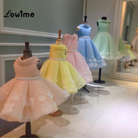 Multi Color Flower Girl Dresses 2016 Custom Made First Communion Dresses For Girls With Appliqued Cheap Kids Evening Gowns