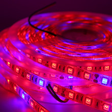 Full Spectrum LED Grow Lights Strip Red Blue 1m 5m 60leds/m Waterproof LED Flower Phyto Growth Vegs Hydroponic Plants Growing(China)