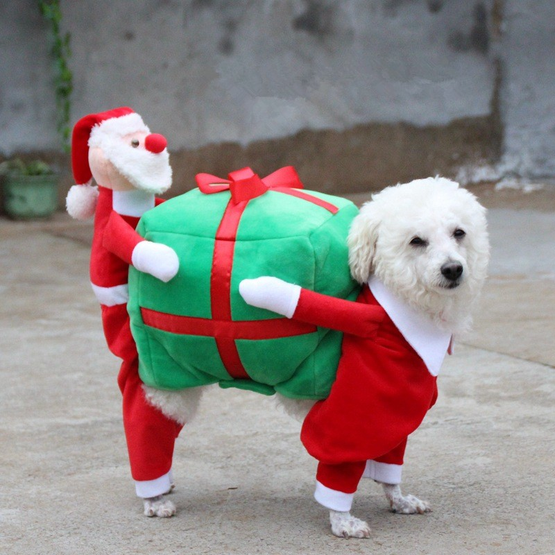 Christmas Dog Clothes (5)