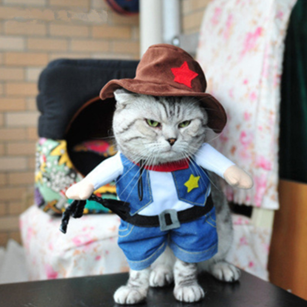 Funny Uniforrm Cat Halloween Costumes  3