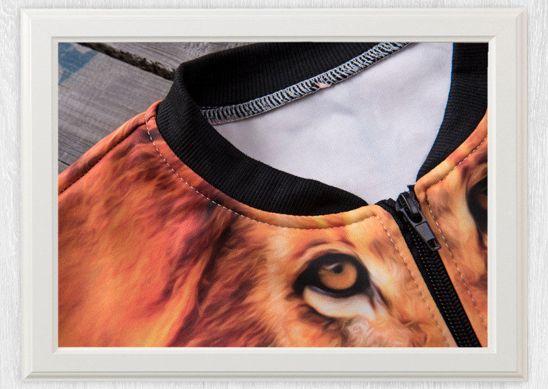 36058 aztec peru lion 009