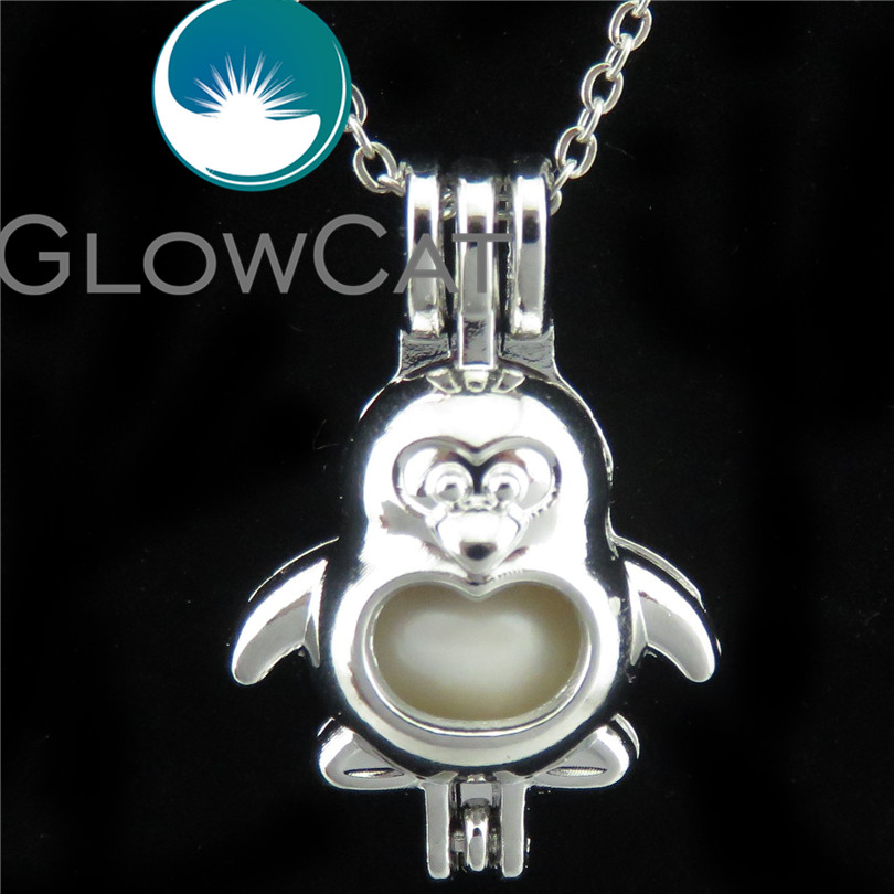5 Pack Silver Cat Star  Beads Cage Locket Pendant Essential Oil Diffuser K804