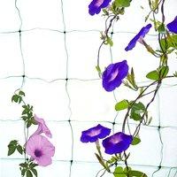 Садовая сеть лоза для альпинизма для домашнего использования сада Анти Птица 10*10 см пруд нейлоновые урожаи фруктовое Дерево Защита овощей 1,...