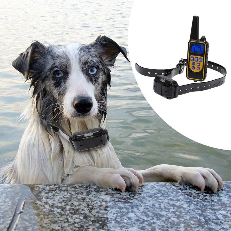 Pet Colar Do Treinamento Do Cão Recarregável 800 M Controle Romote Display LCD À Prova D' Água Sem Casca Choque Elétrico Colar do Treinamento Do Cão Novo