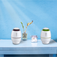 Travel Portable Mini Ultrasonic Humidifier Air Purifier For Car Home Office Desktop 300ml USB Aroma Diffuser