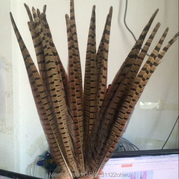 Wholesale 200 pcs beautiful natural color Pheasant Feather 16-18 inches 40-45 cm free shipping