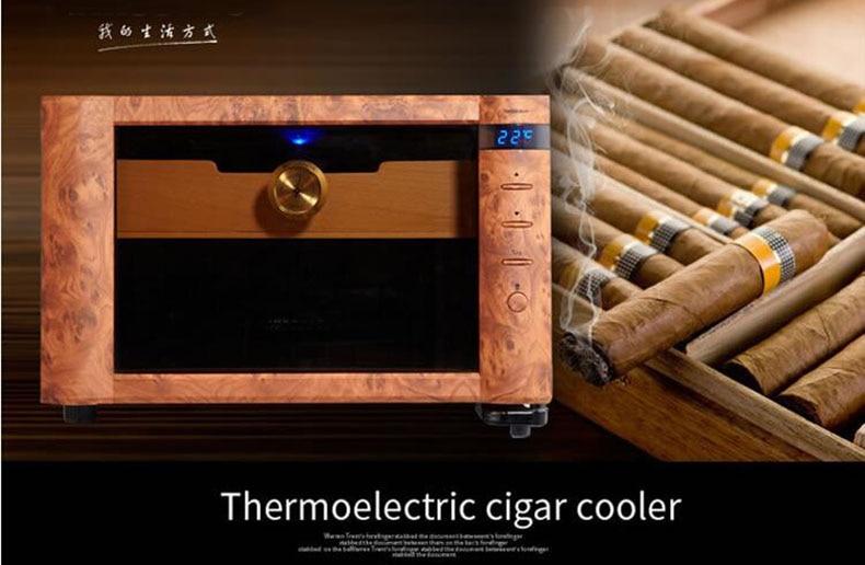 cigar humidar (5)