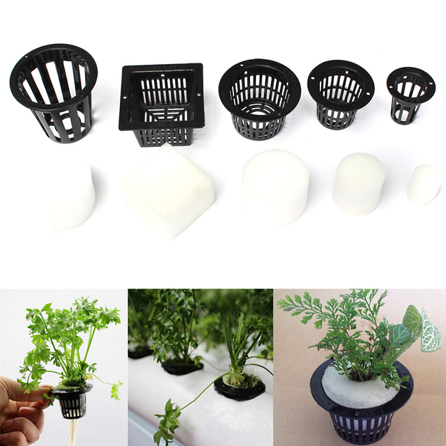 10 mesh pot net basket with 10 clone cloning hydroponic collar foam insert plant for plants. Black Bedroom Furniture Sets. Home Design Ideas