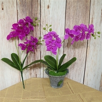 https://ae01.alicdn.com/kf/HTB14O7oxljTBKNjSZFuq6z0HFXaX/2-สาขาประด-ษฐ-Phalaenopsisดอกไม-Real-TOUCHผ-เส-อFloresก-บใบงานแต-งงานตกแต-งสำน-กงาน.jpg