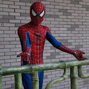 Image 2 - Disfraz clásico Remy de spiderboy para niños y adultos, licra, licra, medias de Spider Boy para Cosplay de Mascota de Halloween
