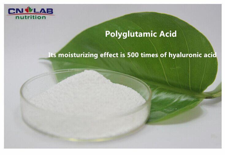 Top Quality polyglutamic acid/ Gamma PGA 500 Times Hyaluronic Acid 200g