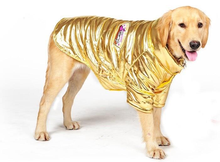 Big Lots Dog Clothing