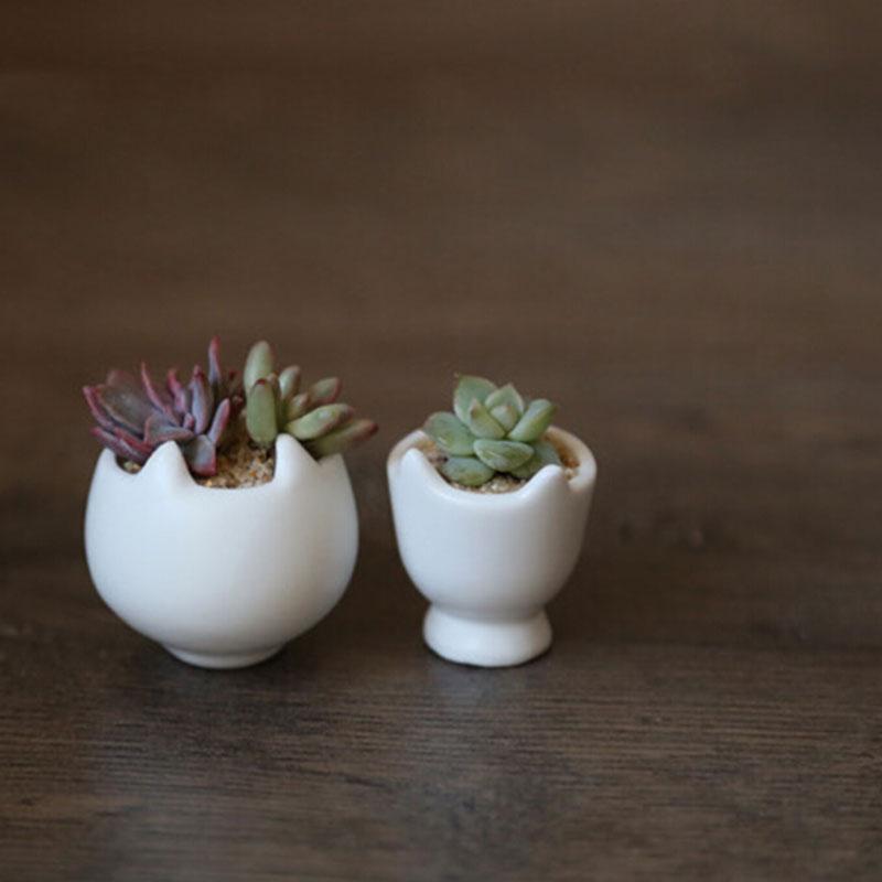White Ceramic Flower Pots Pots Planters Mini Shape