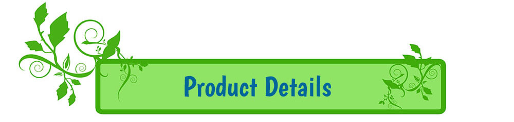 Product Details Banner
