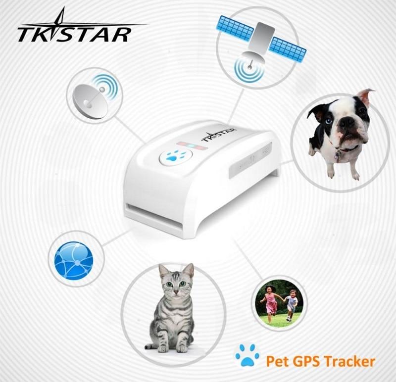 Mini Tracker LK909 Malá domácí zvířecí kočka GPS Tracker Locator Tracking Platform Via Website / iOS / Android App