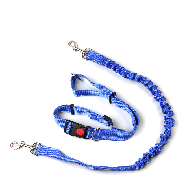 Hand Free Leashes Dogs