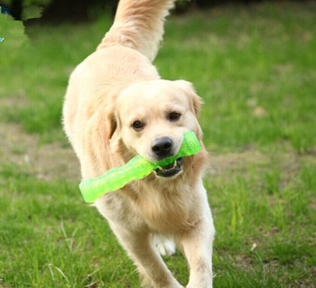 Free shipping pet dog playing toys sound stick TPR safe non-toxic material strong for chewing chew dog toys 10pcs/lot