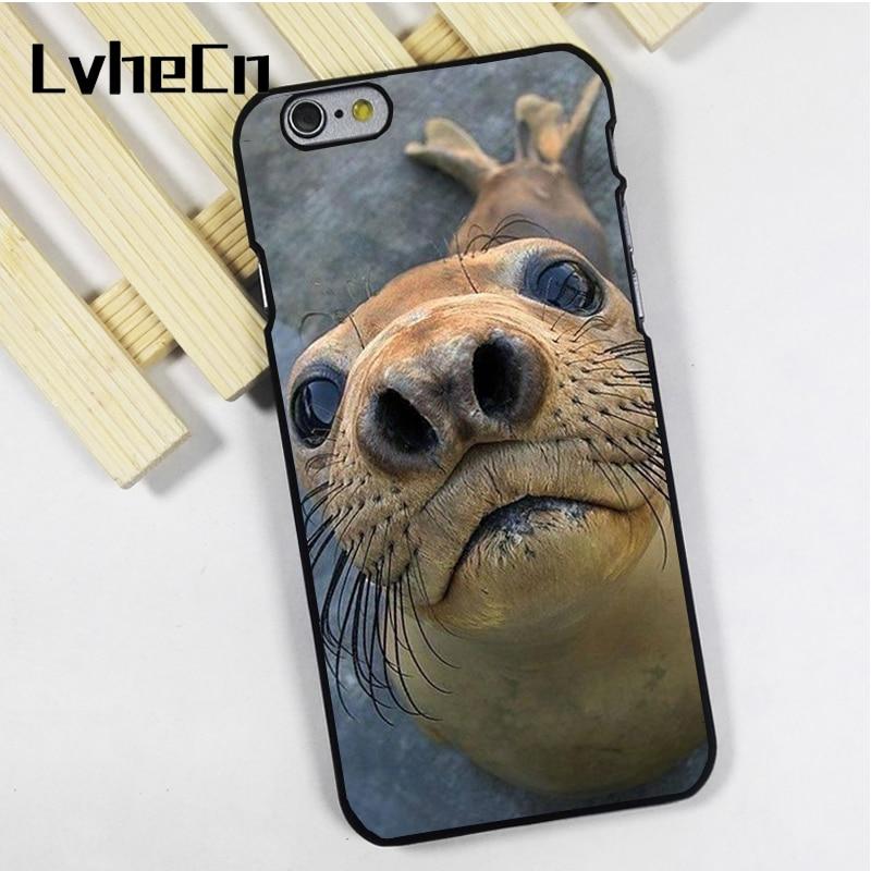 LvheCn phone case cover fit for iPhone 4 4s 5 5s 5c SE 6 6s 7 8 plus X ipod touch 4 5 6 Adorable Seal Sea Lion Photo Close Up