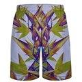 2016 summer shorts for men comfort casual men's shorts sung  Men's beach shorts