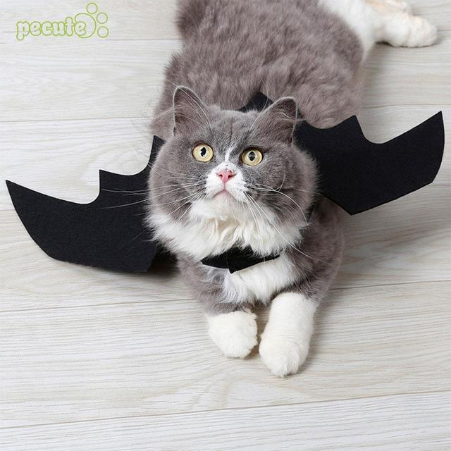 Halloween Funny Cat Clothes Bat Wings Cute Fancy Pet Dress Dressing Up Cat  Party Costume Creative Cat Costume Drop Shipping 91639f8fdd0b