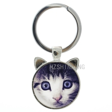 Newest arrival cute  ear keychain vintage cats face glass dome silver plated key chain ring funny grumpy  jewelry CN221