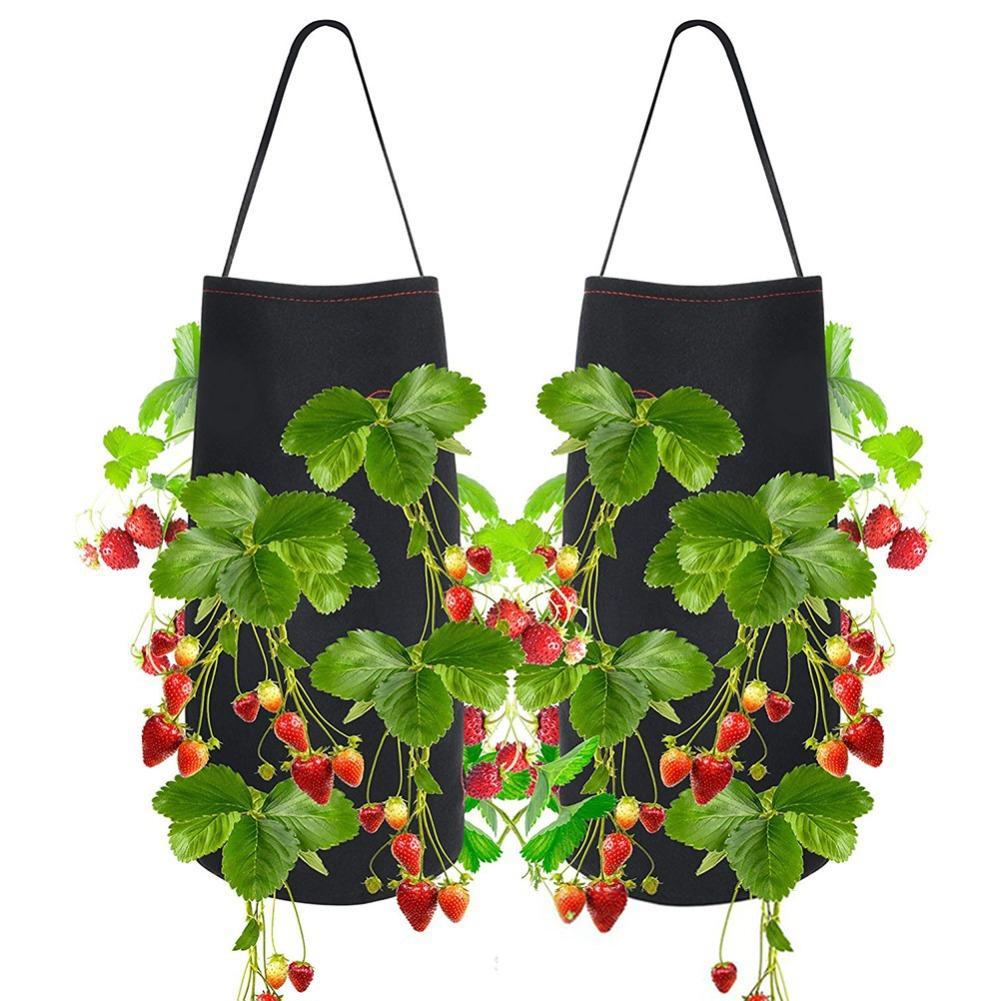 Come Piantare Il Mango online shop 1 pcs felt hanging garden farm home planting