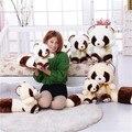 2015 День святого валентина подарок, длиннохвостая енот куклы, Медвежонок виверр, супер милые плюшевые игрушки куклы девушки день подарок