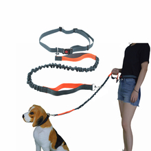 Pet Dog Hands Free Leashes Elasticity Reflection Walking Harness Leash For Medium Big Collar Leads Rope Supplier