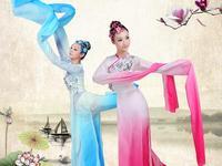 Китайский с длинным рукавом женский Yangko танец костюм Для женщин древний китайский национальный зонтик костюм Дэн Танцы танцор носить 16
