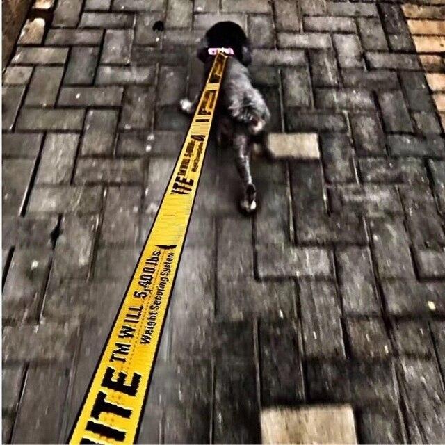 1.6 m di Modo di Nylon Pet Collari Conduce, Cani Guinzaglio Set Per Le Piccole M