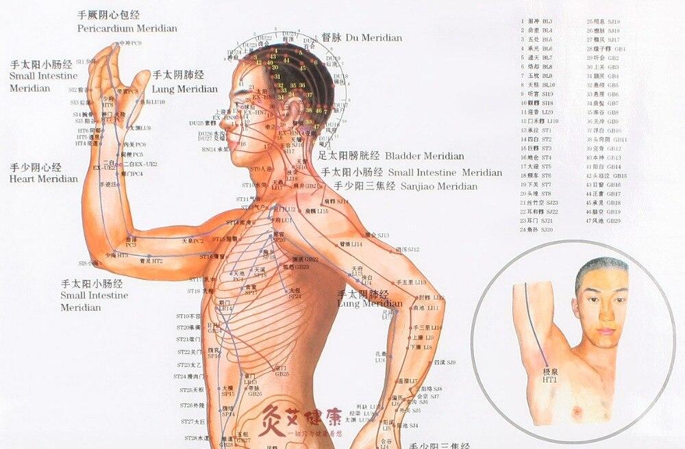 Contemporáneo Mapa De Esqueleto Humano Embellecimiento - Imágenes de ...