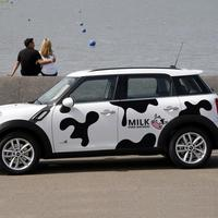 Lovely dairy cattle design car whole body decor sticekers and decals for BENZ SNMART/MINI COOPER/VW POLO,car styling vinyl cover